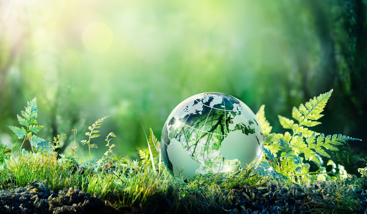 Nachhaltigkeitsstammtisch - TEAM FÜR TECHNIK GmbH